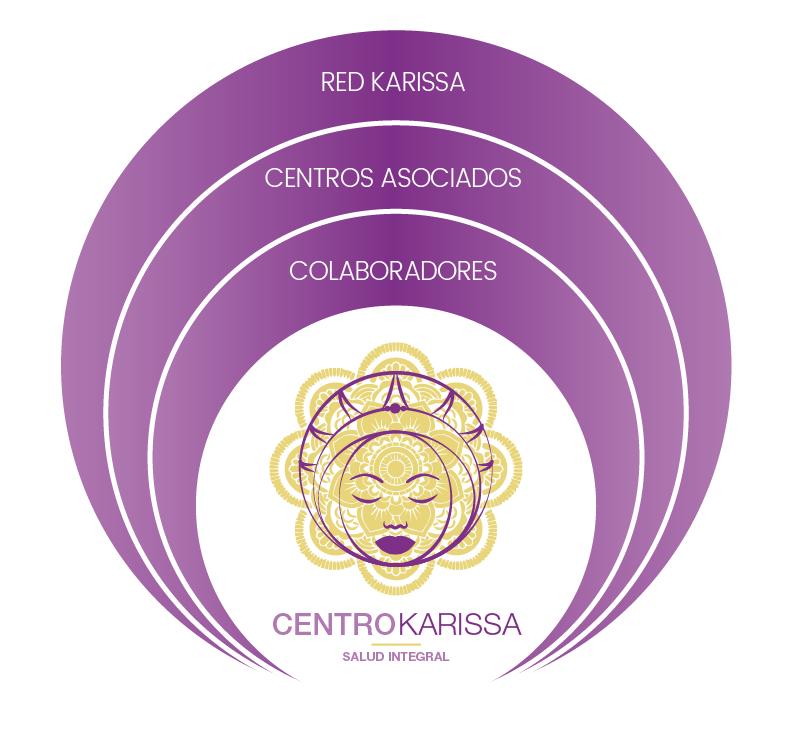 Estructura Karissa, profesionales, colaboradores, centros asociados y red Karissa